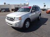 2009 Brilliant Silver Metallic Ford Escape XLT V6 #53981079