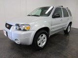 2006 Silver Metallic Ford Escape Hybrid 4WD #53980931