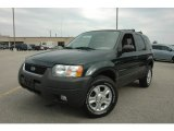 2004 Ford Escape Aspen Green Metallic
