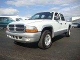 2004 Bright White Dodge Dakota SLT Quad Cab #53981984