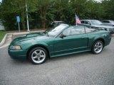 2001 Ford Mustang Electric Green Metallic