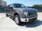 2011 Sterling Grey Metallic Ford F150 Texas Edition SuperCrew 4x4 #53980612
