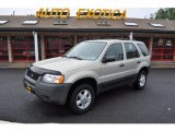 2003 Gold Ash Metallic Ford Escape XLS V6 4WD #53982638
