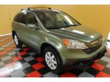 2008 Green Tea Metallic Honda CR-V EX-L 4WD #53981615