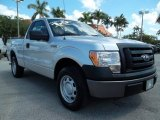 2010 Ingot Silver Metallic Ford F150 XL Regular Cab #54203154