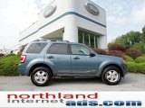 2010 Steel Blue Metallic Ford Escape XLT 4WD #54241977