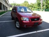 2006 Redfire Metallic Ford Escape Limited 4WD #54257052