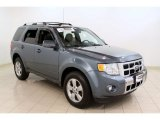2010 Steel Blue Metallic Ford Escape Limited V6 4WD #54256864