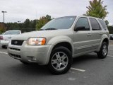 2004 Ford Escape Gold Ash Metallic