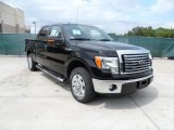 2011 Ebony Black Ford F150 Texas Edition SuperCrew #54256008