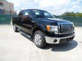 2011 Ebony Black Ford F150 XLT SuperCrew #54418558