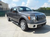 2011 Sterling Grey Metallic Ford F150 Texas Edition SuperCrew #54418557