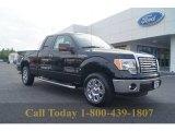 2011 Ebony Black Ford F150 XLT SuperCab #54418457