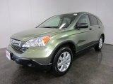 2007 Green Tea Metallic Honda CR-V EX 4WD #54418695