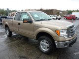 2011 Pale Adobe Metallic Ford F150 XLT SuperCab 4x4 #54509239