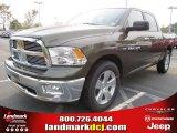 2012 Sagebrush Pearl Dodge Ram 1500 Big Horn Crew Cab #54630536