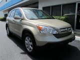 2009 Borrego Beige Metallic Honda CR-V EX-L #54630383