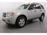 2009 Light Sage Metallic Ford Escape XLS #54630341