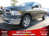 2012 Sagebrush Pearl Dodge Ram 1500 Big Horn Quad Cab #54683837