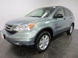 2011 Opal Sage Metallic Honda CR-V SE 4WD #54683958