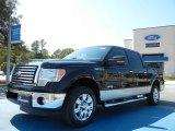 2011 Ebony Black Ford F150 XLT SuperCrew #54738398