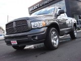 2004 Graphite Metallic Dodge Ram 1500 Sport Regular Cab 4x4 #54738356