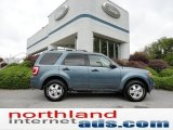 2010 Steel Blue Metallic Ford Escape XLT V6 4WD #54791709