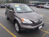 2009 Urban Titanium Metallic Honda CR-V EX-L 4WD #54791873