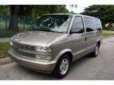 2004 Light Pewter Metallic Chevrolet Astro Passenger Van #54851123