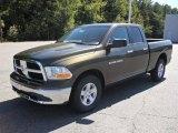 2012 Sagebrush Pearl Dodge Ram 1500 SLT Quad Cab #54851532