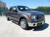 2011 Sterling Grey Metallic Ford F150 Texas Edition SuperCrew #54913071