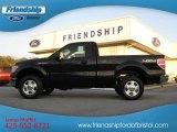 2011 Ebony Black Ford F150 XL Regular Cab 4x4 #55018884