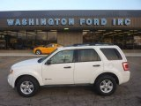 2009 White Suede Ford Escape Hybrid 4WD #55019183