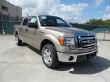 2011 Pale Adobe Metallic Ford F150 XLT SuperCrew #55019085