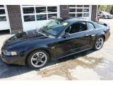 2001 Black Ford Mustang GT Coupe #55073514