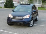 2010 Royal Blue Pearl Honda CR-V EX-L AWD #55101743