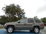 1999 Jeep Grand Cherokee Taupe Frost Metallic