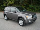 2011 Sterling Grey Metallic Ford Escape XLT V6 #55138654