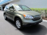 2009 Green Tea Metallic Honda CR-V EX-L #55138034