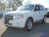 2009 White Suede Ford Escape XLT 4WD #55138200