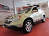 2008 Borrego Beige Metallic Honda CR-V EX-L 4WD #55189180