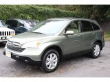 2009 Green Tea Metallic Honda CR-V EX-L 4WD #55236320