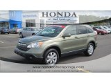 2009 Green Tea Metallic Honda CR-V EX-L #55332605