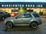 2011 Sterling Grey Metallic Ford Escape XLT Sport 4WD #55332582