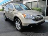 2007 Borrego Beige Metallic Honda CR-V EX-L #55332364