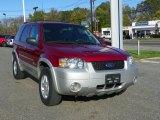 2006 Redfire Metallic Ford Escape Hybrid 4WD #55365172