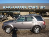 2011 Sterling Grey Metallic Ford Escape Limited V6 4WD #55365284