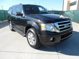 2010 Tuxedo Black Ford Expedition XLT #55450374