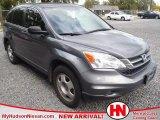 2010 Polished Metal Metallic Honda CR-V LX #55487524