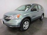 2010 Opal Sage Metallic Honda CR-V LX AWD #55537289